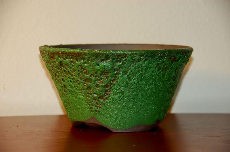 La mia collezione personale di vasi e sottovasi per bonsai for Vasi bonsai plastica