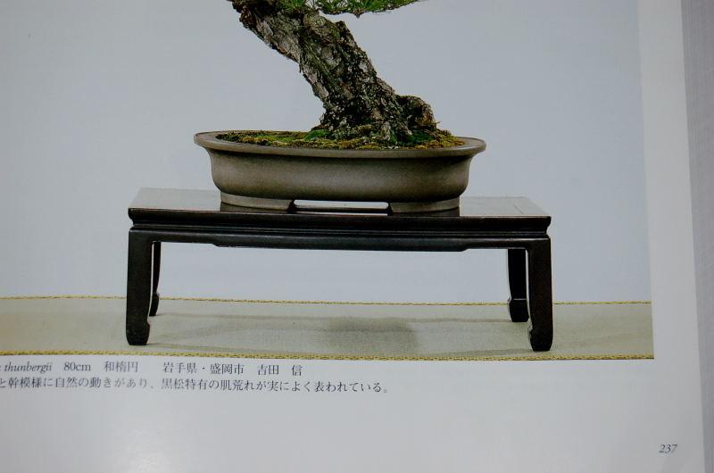 DSC_00010001